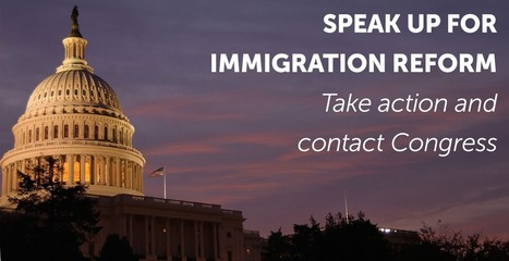 Take Action | MoreVisas Immigration and Visa Services | Scoop.it