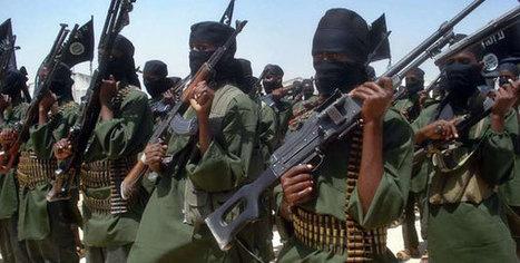 Terrorism was biggest concern in Kenya, Nigeria, Tunisia- Africa poll | Unit 4 (Political Geography) | Scoop.it