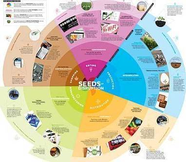 IFTF: Seeds of Disruption | @liminno | Scoop.it