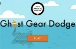 TECHIE: How Can A Gamer Save Marine Mammals? | PASSIONS | Scoop.it