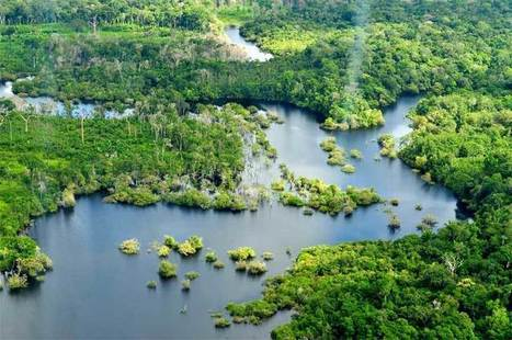 Imperiled Amazon freshwater ecosystems urgently need basin-wide study, management | Rainforest EXPLORER:  News & Notes | Scoop.it
