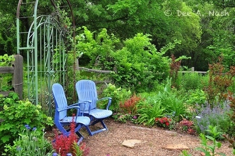 A potpourri of gardening tips - Red Dirt Ramblings®   Annie Haven   Haven Brand   Scoop.it