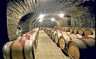 Is expensive wine worth the money?  - Telegraph | Wine in the World | Scoop.it