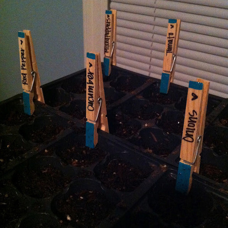 Planting Seeds + DIY Plant Markers | Upcycled Garden Style | Scoop.it
