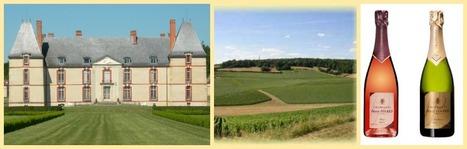 Provins aux portes de la Champagne | Cité médiévale de #Provins | Scoop.it