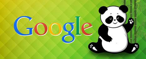 Trop de 404 non aucun impact sur le référencement #seo #Panda 4.2 | Veille SEO - Référencement web - Sémantique | Scoop.it