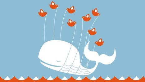 Cómo se moldea en Twitter la opinión pública y por qué debería de ... - Pijama Surf   Recursos para twitter   Scoop.it