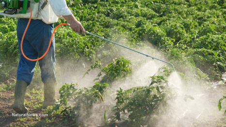 Agent Orange ingredient 2,4-D could soon be sprayed on thousands of fields near U.S. schools | Sustain Our Earth | Scoop.it