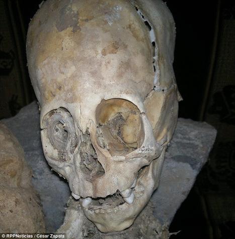 Alien #UFO Sightings: Is this an alien skull? | Waarheid | Scoop.it