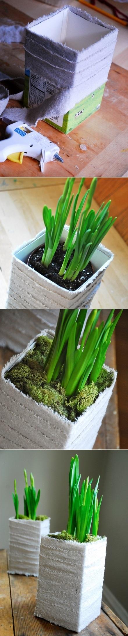 DIY Milk Carton Planter | Backyard Gardening | Scoop.it