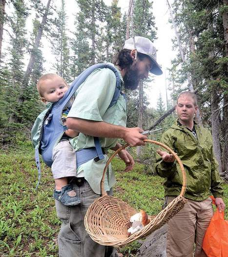 Reaping the forest's bounty - The Durango Herald | mushrooms and cancer | Scoop.it