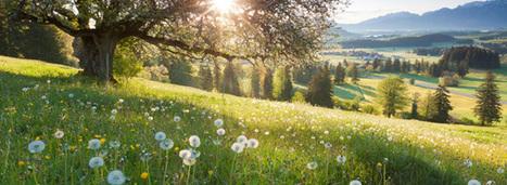 Les sols : un atout contre le réchauffement climatique   Environnement et développement durable, mode de vie soutenable   Scoop.it