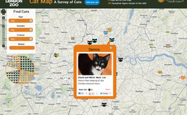 London Zoo Targets Cat Lovers With Interactive Map | Digital-News on Scoop.it today | Scoop.it