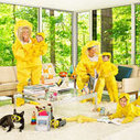 How to Keep Your Family Safe from Toxic Chemicals | BPA Issues Investigation | Scoop.it