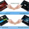 Interface Customization Services