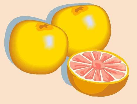 Grapefruit Diet: Does it really work for weight loss -Just for hearts | Diet Plans : Make Healthier Food Choices! | Scoop.it