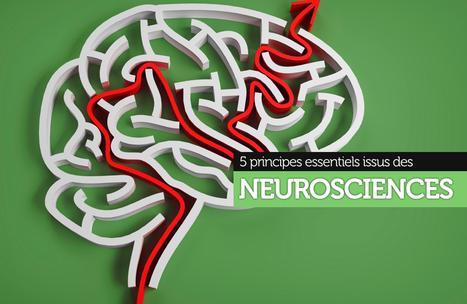 5 principes issus des neurosciences pour favoriser l'apprentissage en formation | Numérique & pédagogie | Scoop.it