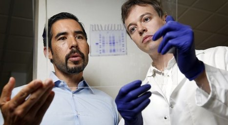 New DNA code makes synthetic proteins | Amazing Science | Scoop.it