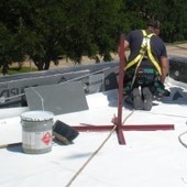 Why I Love the Green Roofing Systems | GreenRoofs | Scoop.it