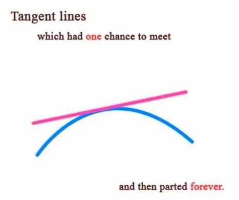 Matemáticas: una ¿triste? historia de amor | TECNOLOGÍAS EN MATEMÁTICA EDUCATIVA | Scoop.it