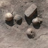 Remains of Ancient Egyptian Epidemic Uncovered - Discovery News   Epidemiology Research   Scoop.it