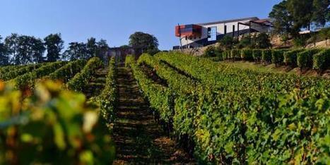 Best Of Wine Tourism : c'est reparti ! | Le Vin et + encore | Scoop.it