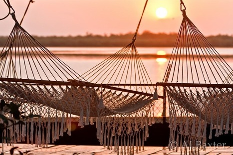 Sunrise at Crooked Tree | Belize in Social Media | Scoop.it