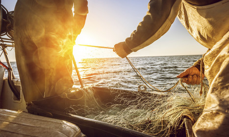 No Landing, No Pirates: Port State Measures Agreement Can Sink Illegal Fishing | Aquaculture Directory | Scoop.it