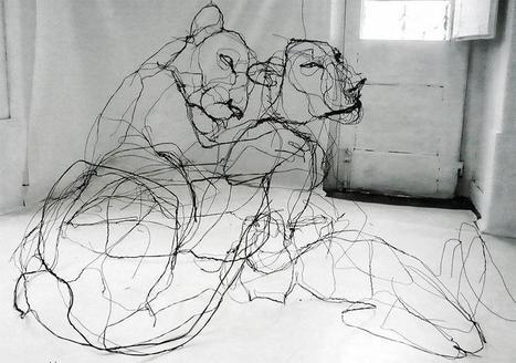 Portuguese artist makes wire animal sculptures that look like sketches | Bureau de curiosités | Scoop.it
