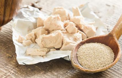 Zinco. Perché integrarlo nell'alimentazione? | Medicina Naturale | Scoop.it
