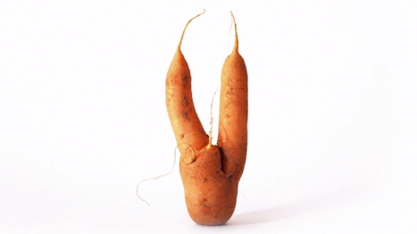 In Europe, Ugly Sells In The Produce Aisle | zero food waste | Scoop.it