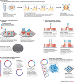 Coming of age: ten years of next-generation sequencing technologies : Nature Reviews Genetics : Nature Publishing Group | Health Informatics | Scoop.it