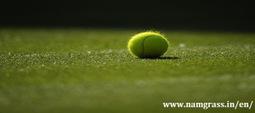 Tennis Grass, Futsal Grass, Football Grass - India | Artificial Grass India | Scoop.it