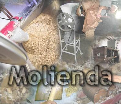 Molienda | Ingeniería en Molineria | Scoop.it