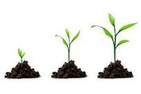 ¿Entiendes el motor de crecimiento de tu modelo de negocio? | Habilidades de marketing estratégico, tendencias y mercados | Scoop.it