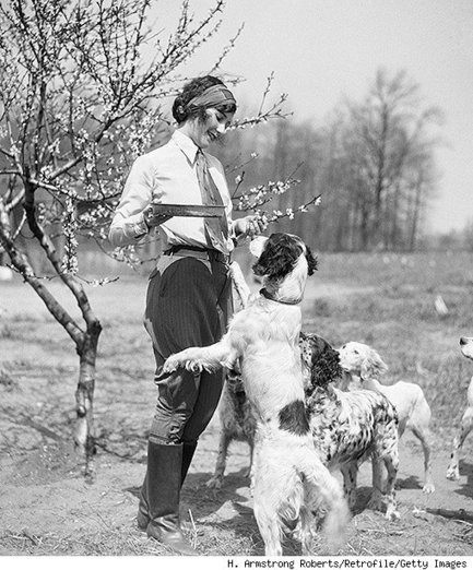The Forgotten History of Pet Food - Paw Nation | Raw Dog food | Scoop.it