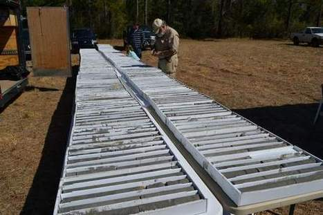 DNR testing soil samples at Hobcaw Barony | South Carolina | Scoop.it