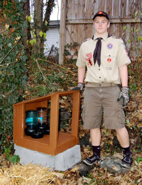 Scout's love of cats inspires Eagle Scout project   Eagle Scout Project   Scoop.it