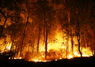 Newest Victims of Climate Change: Notes From a Wildfire Refugee | Water | Climate change challenges | Scoop.it