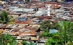 Population Explosion Must Be Controlled - AllAfrica.com | project tanzania | Scoop.it