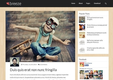 9 Handpicked Best Free Blogger Templates | Bloggers paradise | List of Dofollow RSS High PR Submission Sites 2014 | Scoop.it