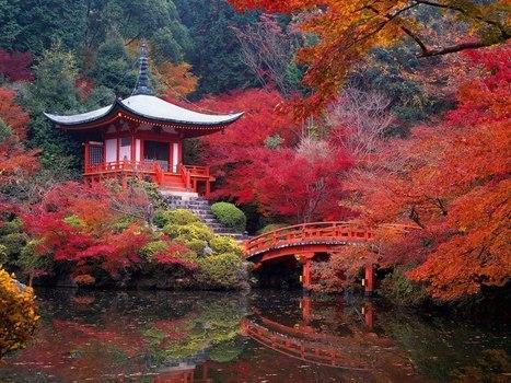 En algún lugar de Japón....   Fotografía general   Scoop.it