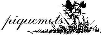 Piquemots - Jeux de lettres | Remue-méninges FLE | Scoop.it