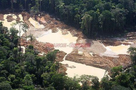 Le plateau des Guyanes, roi de la déforestation - Toute l'actualité de la Guyane sur Internet - FranceGuyane.fr | Guyane orpaillage illégal | Scoop.it