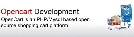 Best Opencart Development Company in Delhi, India | Opencart Developers Delhi | BetaSoftTechnology | Website Design & Development Company | Scoop.it