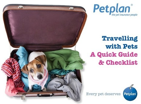 Travelling With Pets – Quick Guide & Checklist | Petplan Blog | Pet Insurance | Scoop.it