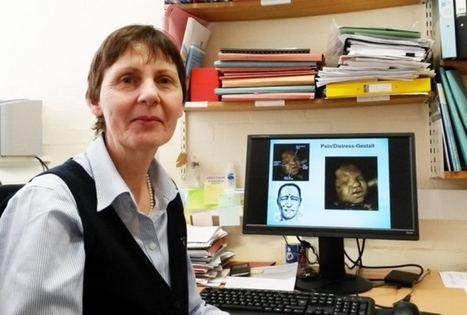 Faces of unborn babies 'show effects of smoking' | ESRC press coverage | Scoop.it