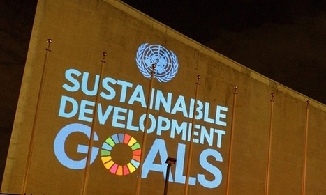 Sustainable development quiz: what do you know about the global goals?   Economiscellany   Scoop.it