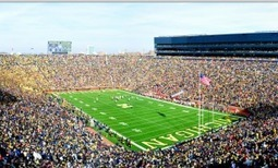 Commend Football Stadiums for Vegetarian Options | Sports Facility Management - 4353386 | Scoop.it