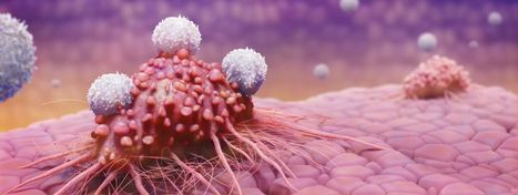 Scientists Just Made a Breakthrough That Could Change the Face of Cancer Treatment   Therapeutic cancer vaccines   Scoop.it